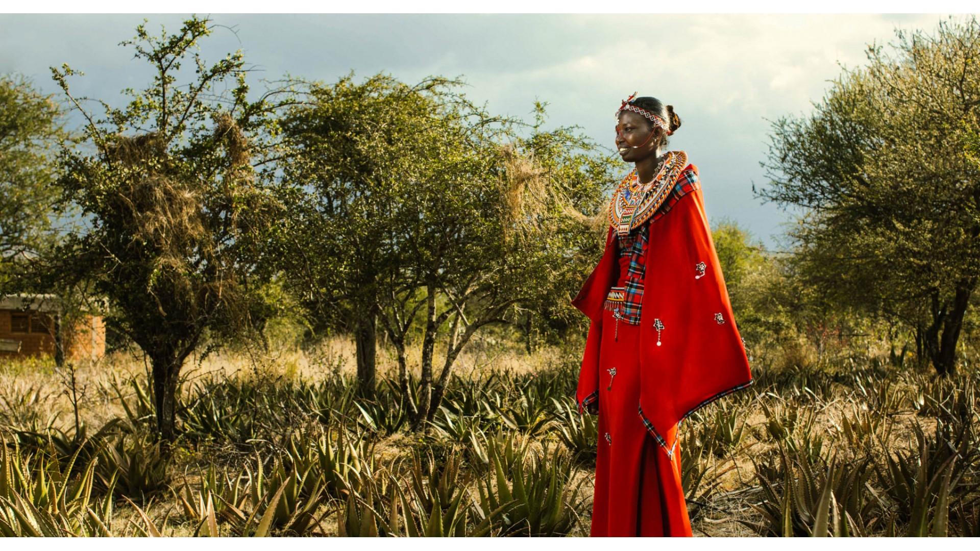 Masajke in aloja