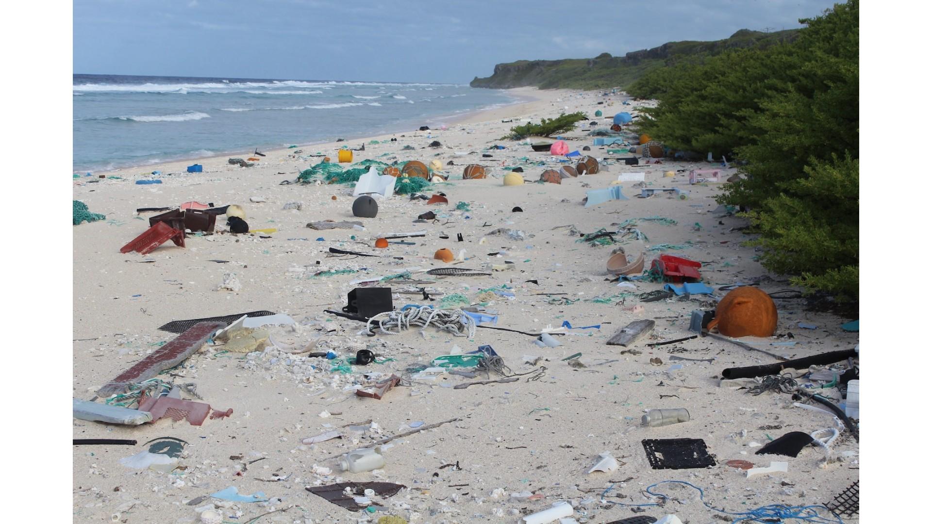 Problem onesnaževanja s plastiko